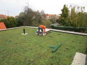 Mise en place d'un toit vert