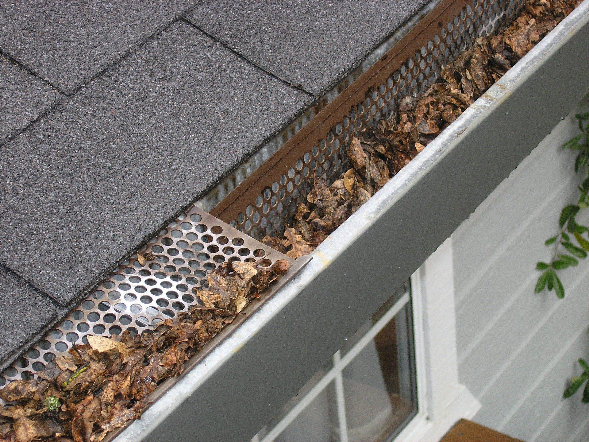Une gouttière obstruée, cause de fuite dans la toiture